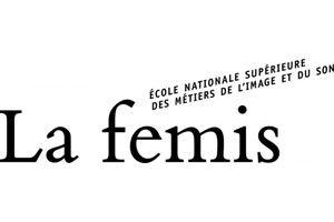 femis